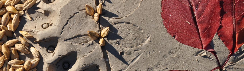 Ziarna i liście odciśnięte w glinie.